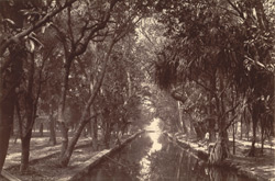 Canal of the Queen's Garden south of the Palace, within the inner enclosure, [Mandalay]